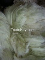 Natural Sisal Fiber of kenyan Origin, offer free samples