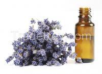 lavender oil(lavendula)
