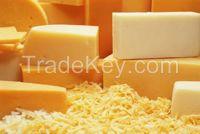 Cheddar Cheese | Edam Cheese | Gouda Cheese | Mozarella Cheese