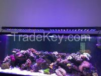 AQL-3S led aquarium