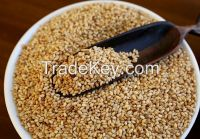 Our company growns and exports organic and conventional seeds, chia (white and black), sesame, quinoa and beans. All the organics and certified.