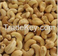 Premium Quality Raw Cashew Nuts
