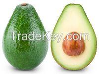 100% Natural Fresh Avocado Fruit