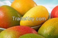 100%  Fresh Mangoes