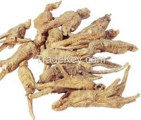 Angelica Sinensis/Dang Gui /Chinese Tonic Herbs, whole/cut/slice