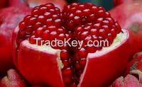 Quality Pomegranate