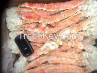 Giant crab phallanx