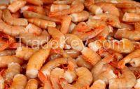 live shrimps  crab