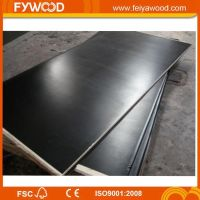 Film faced plywood wood plywood