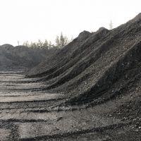 Steam Coal RB1