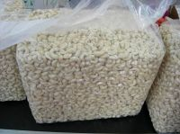 Raw and processed cashew nuts and kernels for sale
