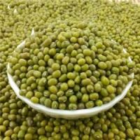 Good quality green mung beans for export
