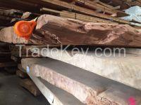 Natural Kauri Wood