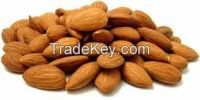 Almond and Apricot Nuts