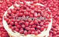 KIDNEY BEANS | COCOA POWDER | CHICKPEAS | RED BEANS | COCOA BEANS