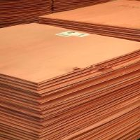 99.99% Pure Copper Cathode
