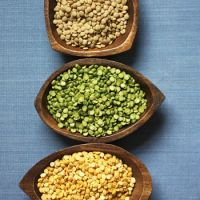 Bulk supplier of Green, Yellow And Red Lentils For Export
