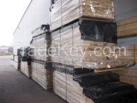 Edged Sawn Birch Lumber