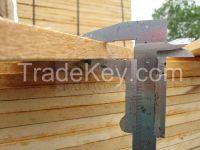 Freshly Cut Edged Birch Timber