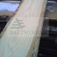Premium Offer for Ash Boards