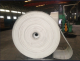 Shandong Longli Belts Co., Ltd.
