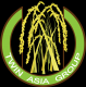 Twin Asia Group