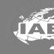 International Automotive Engineers (Pvt)